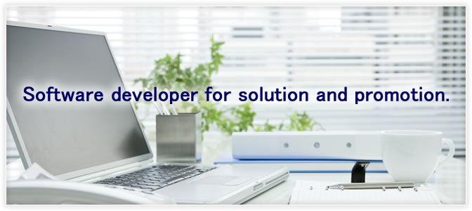 Software developer for solution and promotion